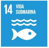 2019-05-09 10_43_10-Objetivos y metas de desarrollo sostenible - Desarrollo Sostenible